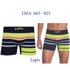 LMA 663-025